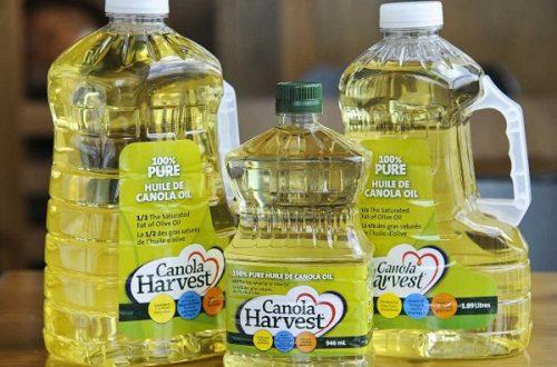 Canola oil là gì?